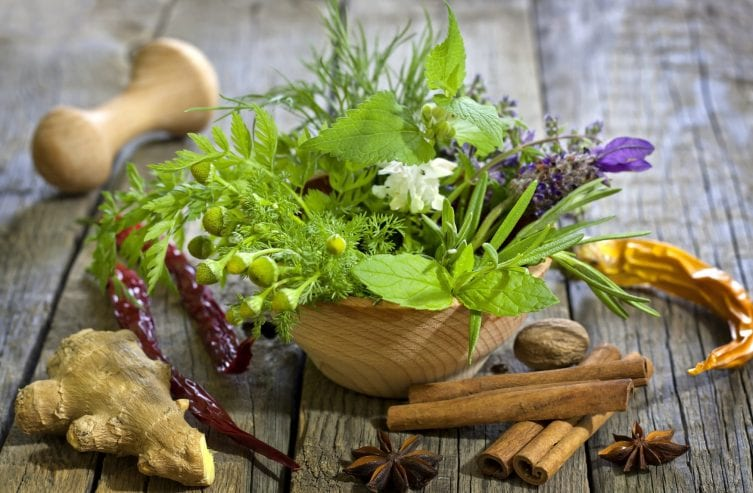 Herbs – Tasty and Healthy Seasoning support a healthy yet tasty diet