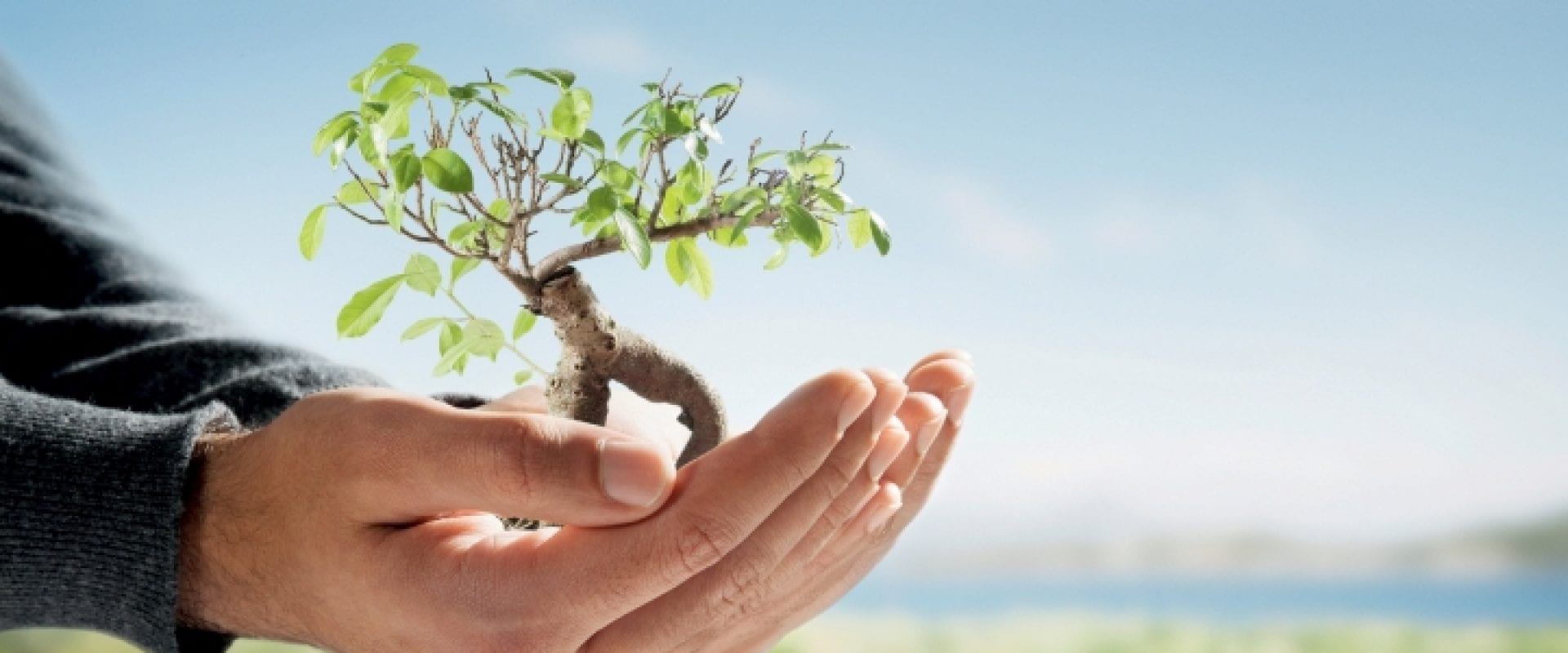 17044World Earth Day – Let's Save Energy!