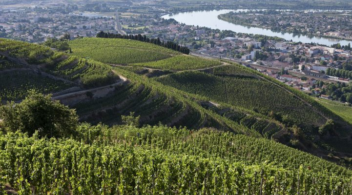 Rhône Valley, France (Hill of Hermitage © Christophe Grilhe)