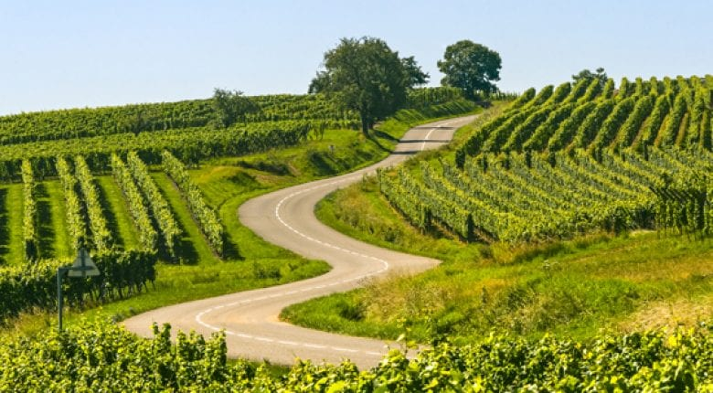 Alsace, Wine, region, Sommelier, France