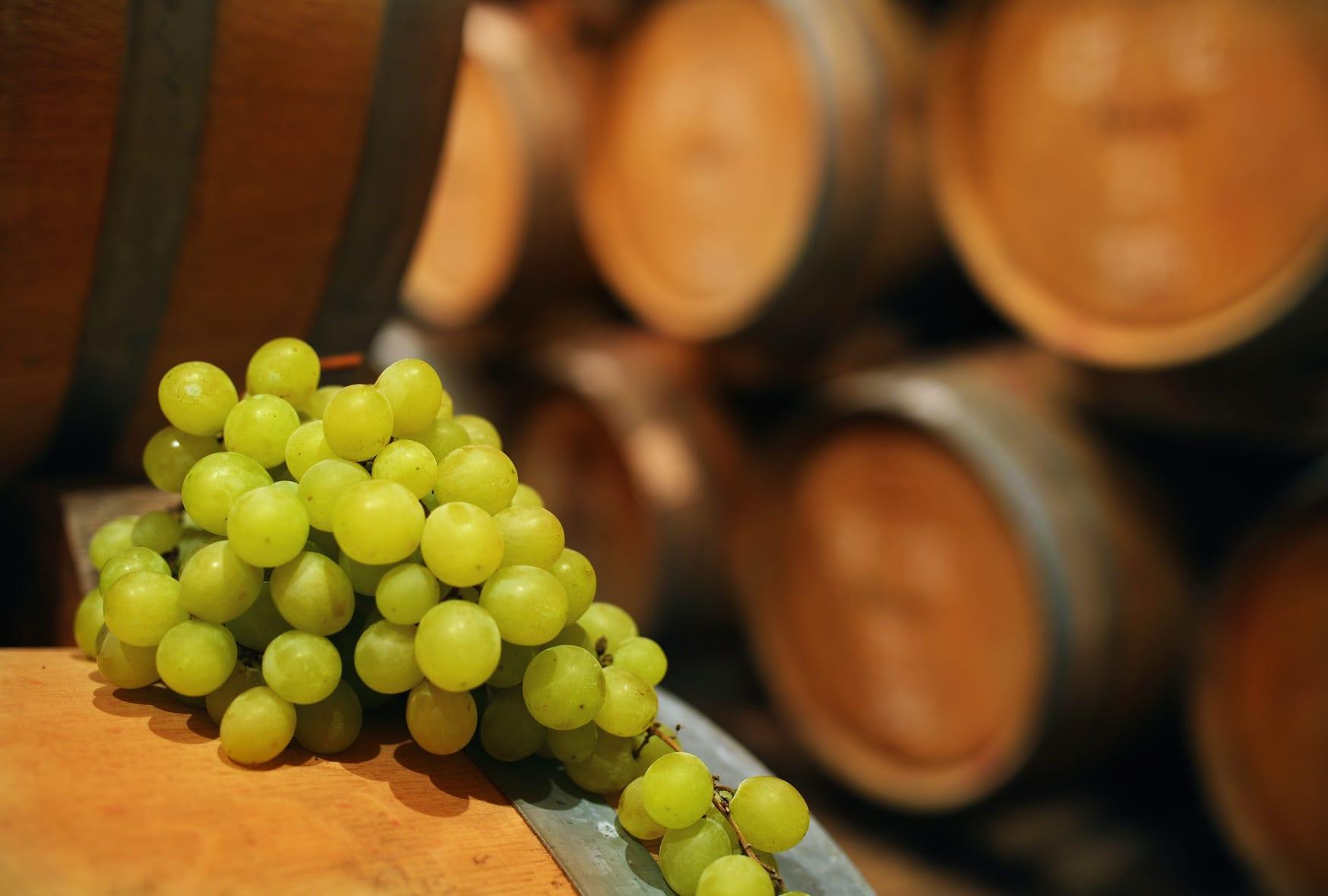 Long term wine storage