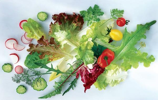BioFresh – супер удължена свежест не само за плодове и зеленчуци