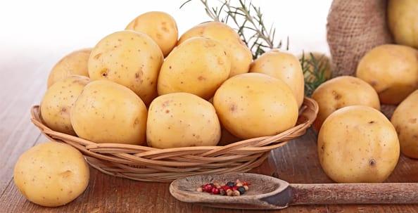 Slider_potatoe_storage_Panther