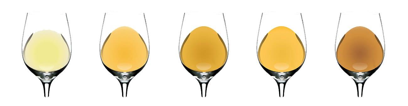 wine-color2