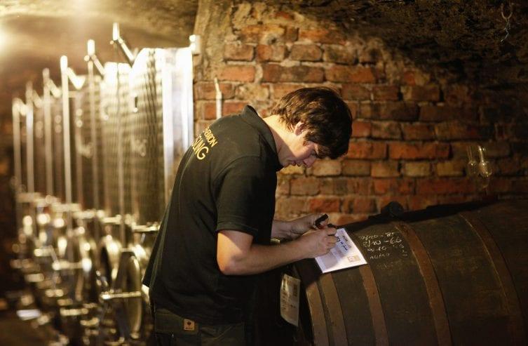 etape-de-productie-ale-vinului-6