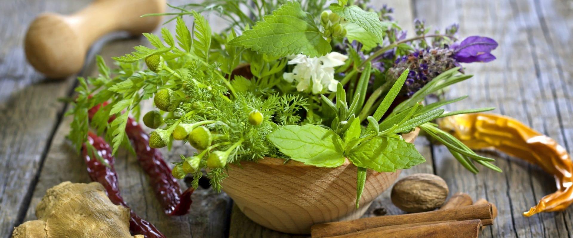 Profitez de vos herbes fraîches plus longtemps !