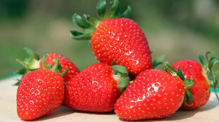Slider Image Erdbeeren