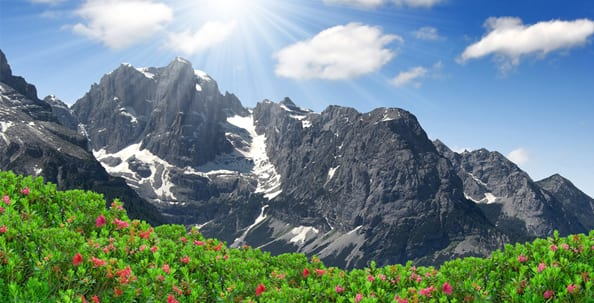 Eis, Eiscreme, Softeis, Speiseeis, Fakten, Eis am Stiel, Eisdiele, Waffel, Dolomiten, Italien
