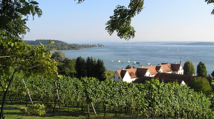 Traumhaft schöne Bodensee Weinregion
