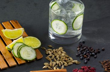 Wein, Essen, Genuss, Liebherr, Sommelier, Blog, Gin, Gin-Sorten, Wacholderbeere, Dry Gin, London Dry Gin, Plymouth Gin, Old Tom Gin