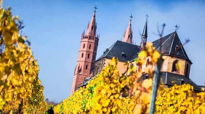 Liebfrauenmilch, Worms, Wein, Rebe, Kirche