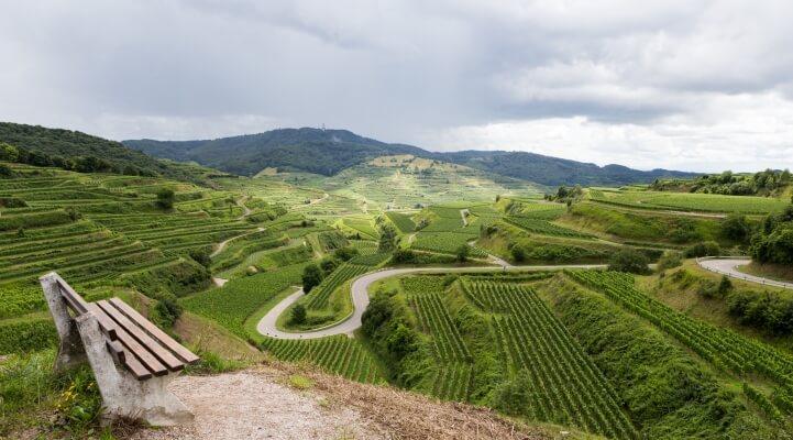 Kaiserstuhl Wein