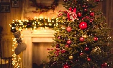 Weihnachtsbaum in Großbritannien