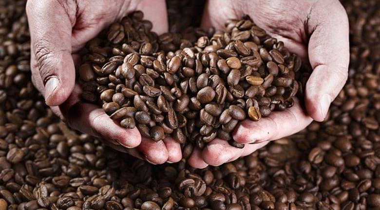 Kaffeebohnen Holzhintergrund Hände