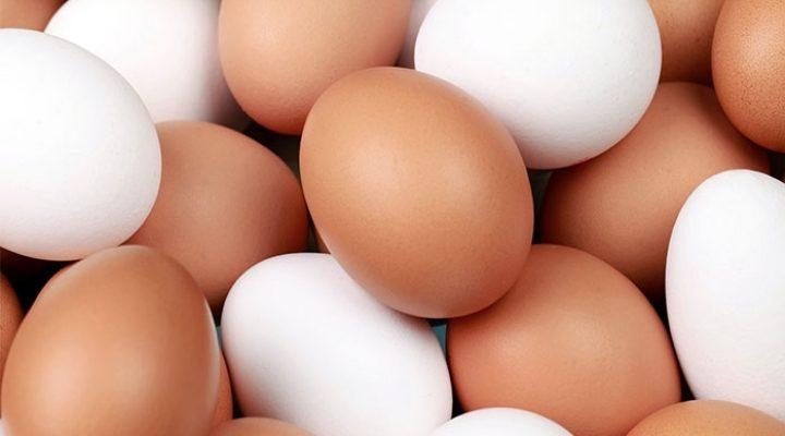 10 цікавих фактів про курячі яйця: колір не має значення