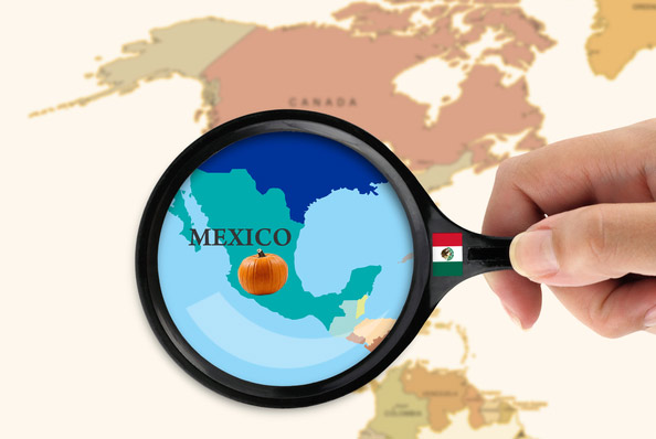 Мексика - родина тыквы