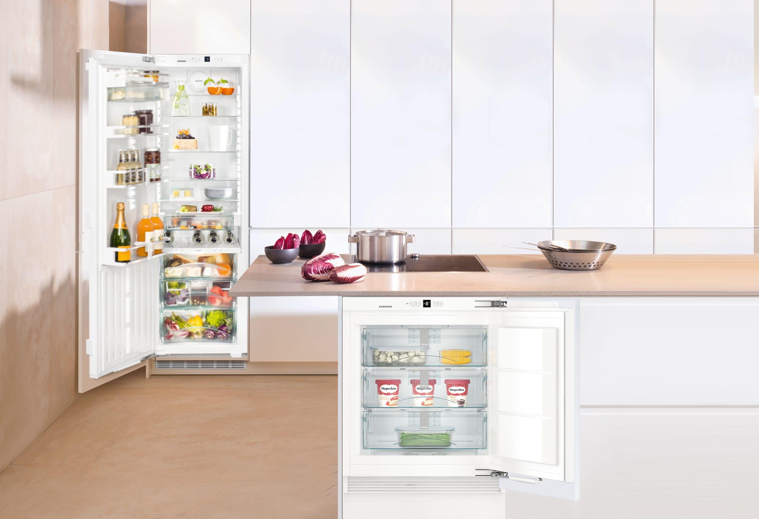 морозильная камера в интерьере кухни