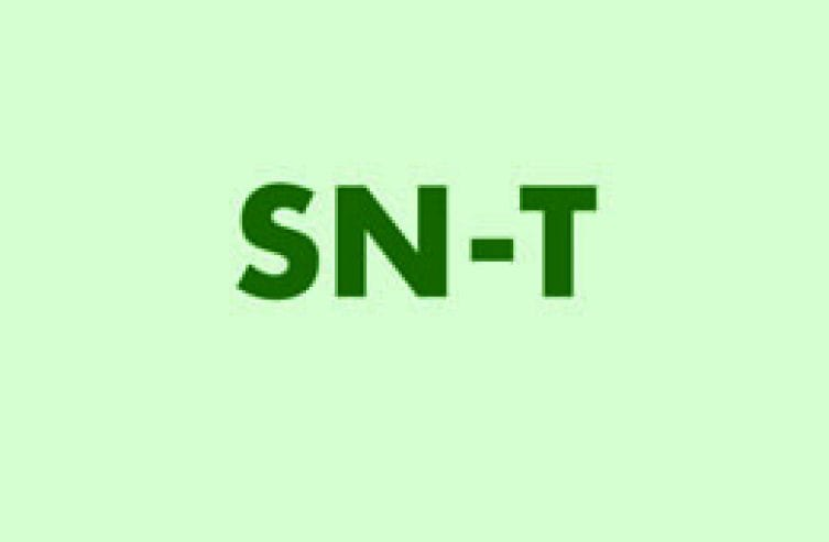 sn-t_2016