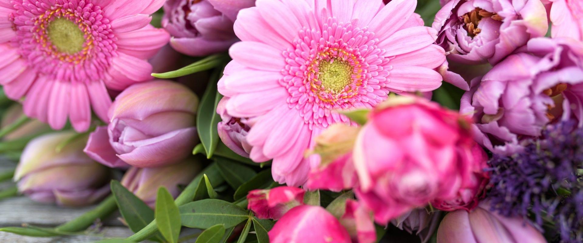 Bloemen in de koelkast bewaren? Ja, maar dat niet alleen!